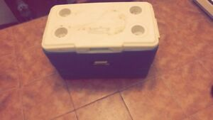 Coleman cooler. Needs to be picked up by 10am Saturday Nov 17th