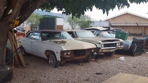 WANTED : 1967 Chevy!