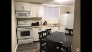Pet friendly one bedroom basement suite in Thickwood