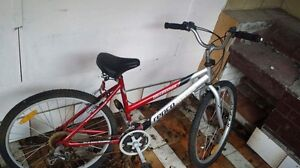 X2 Female 12yrs-adult + 1 mans bike Ramsgate Rockdale Area Preview