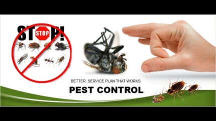 GERMAN COCKROACHES PEST CONTROL TREATMENT. AVAILABLE 7 DAYS