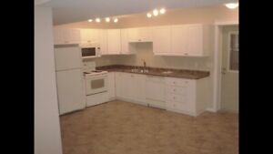1100Sq/Ft Basement Suite in Lakeview