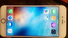 IPHONE 6 PLUS 16gb  *rose gold*  *URGENT* Perth Northern Midlands Preview