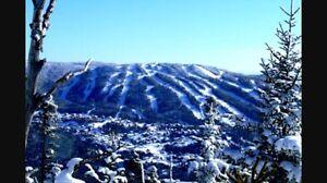 Paradis de la neige Valinouet!!