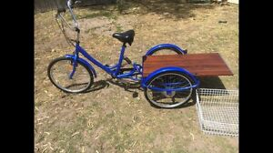 Adult tricycle Rosebud West Mornington Peninsula Preview
