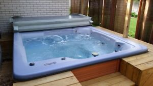 Balboa 8 Person Hot Tub with Extras