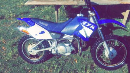 Yamaha TTR90 custom