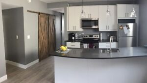Beautifully remodelled 2 Bed 2 Bath in Osborne/Corydon Area