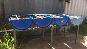 Aquaponics garden set up-sold pending pickup Warnbro Rockingham Area Preview