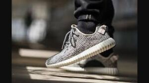 Yeezy shoes, great quality and price 10/10