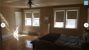 6-month lease for 3-bed home