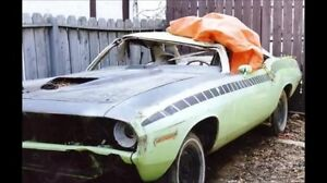 Muscle Cars Wanted. Cashola !!!