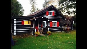 $1500 for week in August! Muskoka Beach Cottage