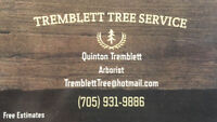 Tree Trimming / Removal Services -705 750 8580