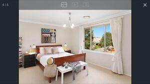 Queen wooden sleigh bed frame Marrickville Marrickville Area Preview