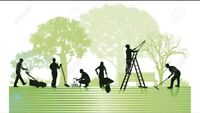 Property maintenance and management