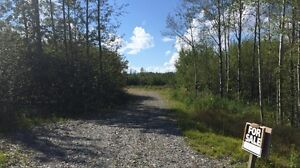 Land for sale - 10 acres Mahoney Rd