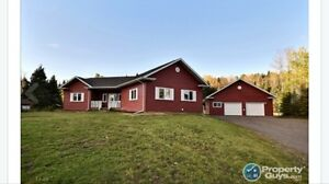 Beautiful home- acres in city limits