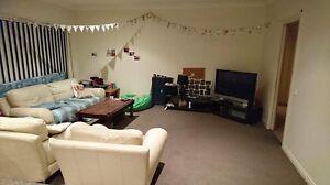 Room for Rent! Kennington Bendigo City Preview