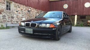 Lowered BMW 320i