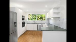 *Cleaner wanted today* large house buderim Buderim Maroochydore Area Preview