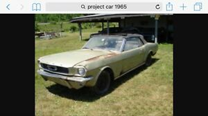 Looking for pre 72 project car what do you have