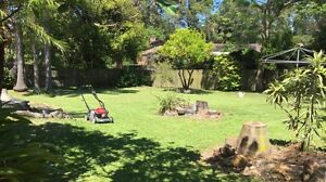 Lawn mowing  & Gardening services Hornsby Hornsby Area Preview