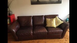 Moran brown leather couch North Bondi Eastern Suburbs Preview