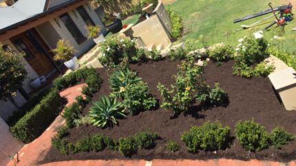 Lawn mowing/garden revamp