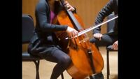 Call-Out for Cellist