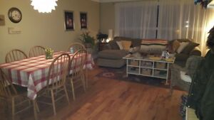 2nd floor 1 bed apartment in downtown Burlington multiplex