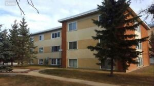2BDRM Available immediately. SEPTEMBER FREE on a 1year lease.
