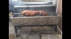 Roaster for rent. Pork, goat, lamb, beef, poultry