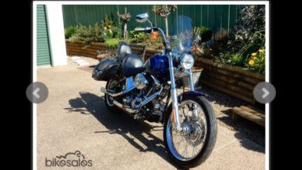 Harley Davidson windshield/windscreen