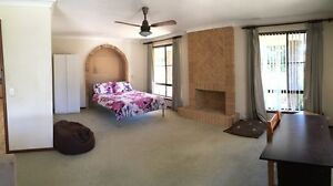 Large Double Bedroom in Waterford - Near Curtin University Waterford South Perth Area Preview