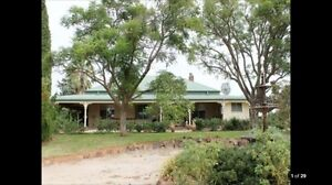 House for rent Coolamon Coolamon Area Preview
