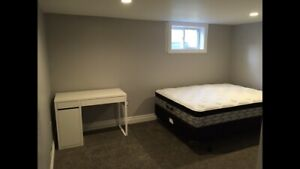 3 Rooms for Rent in Large Basement Apartment