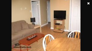 1 Bedroom Furnished Apartment in Clarenville. Utilities Inc.