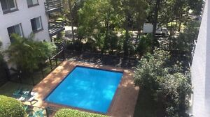 Awesome share apartment with pool Lane Cove Lane Cove Area Preview