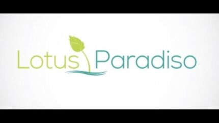 Lotus Paradiso Massage Therapy from $50