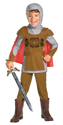 Fairytale Knight Medieval Royal Guard Fancy Dress Up Halloween Child Costume