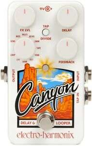 EHX Canyon (Delay and Looper Pedal)