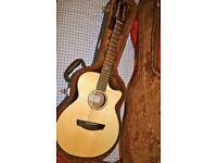 Faith 12 string