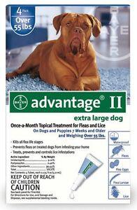 BAYER-ADVANTAGE-II-FLEA-CONTROL-FOR-DOGS-OVER-55-LBS