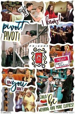 FRIENDS - 25TH ANNIVERSARY POSTER - 22x34 - TV 17497