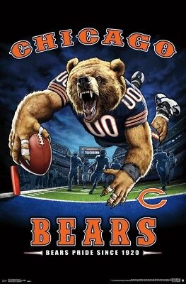 Chicago Bears BEARS PRIDE SINCE 1920 End Zone TD Dive NFL Theme Art POSTER Chicago Bears Nfl End