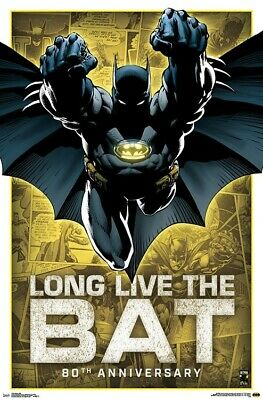BATMAN - 80TH ANNIVERSARY POSTER - 22x34 - DC COMICS 17469 - Batman Poster