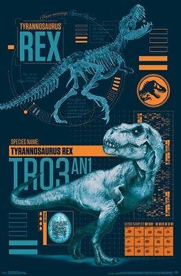 JURASSIC WORLD - T-REX - MOVIE POSTER - 22x34 - DINOSAUR 15588 - Dinosaur Posters