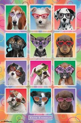 PUPPIES IN SUNGLASSES - KIMBERLIN POSTER - 22x34 CUTE DOGS PUPPY 14919 - Puppy Posters
