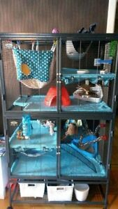 Double Critter Nation Small Animal Cage! GREAT CONDITION